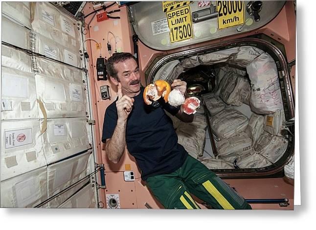 Iss Astronaut With Fruit Greeting Card by Nasa