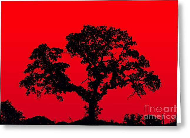 Throb Greeting Cards - iStyle Red - No.9188 Greeting Card by Joe Finney