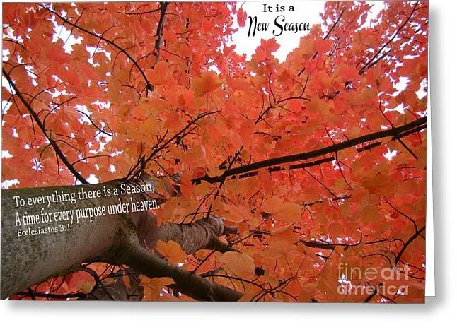It Is A New Season Greeting Card by Beverly Guilliams