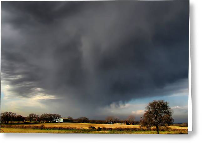 Verga Greeting Cards - It looks like Rain Greeting Card by Shannon Story