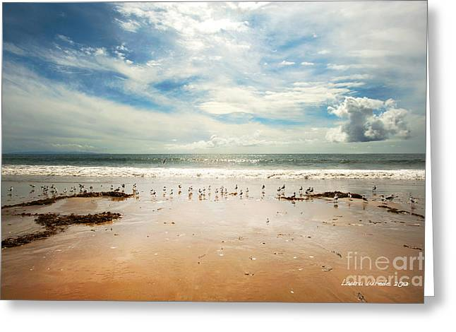 Poular Ocean Art Greeting Cards - It Was a Sunny Day at the Beach from the book MY OCEAN Greeting Card by Artist and Photographer Laura Wrede