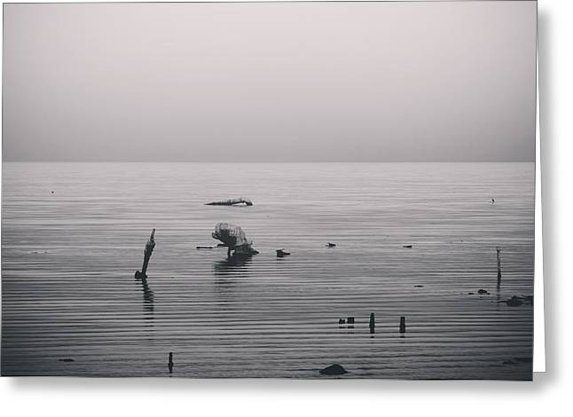 Salton Sea Greeting Cards - It Was Lonely There Greeting Card by Laurie Search