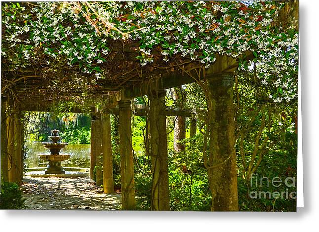 Not In Use Greeting Cards - Italian Pergola Garden Fountain  Greeting Card by Amy Lucid
