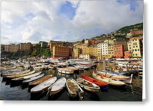 Camogli Greeting Cards - Italy, Liguria, Camogli, The Harbour. © Greeting Card by Tips Images