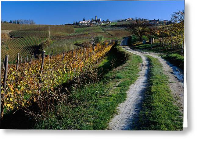 Green Grass Blue Sky Greeting Cards - Italy, Piemont, Road Greeting Card by Panoramic Images