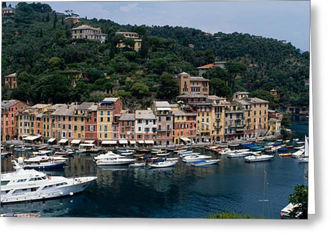 Docked Boat Greeting Cards - Italy, Portfino Greeting Card by Panoramic Images