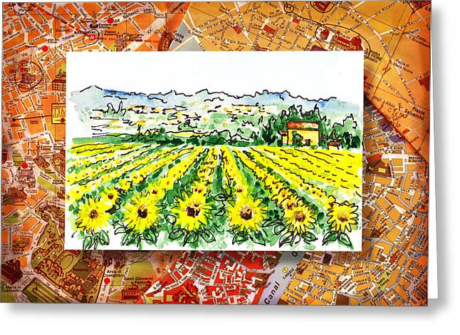 Harvest Art Greeting Cards - Italy Sketches Sunflowers of Tuscany Greeting Card by Irina Sztukowski