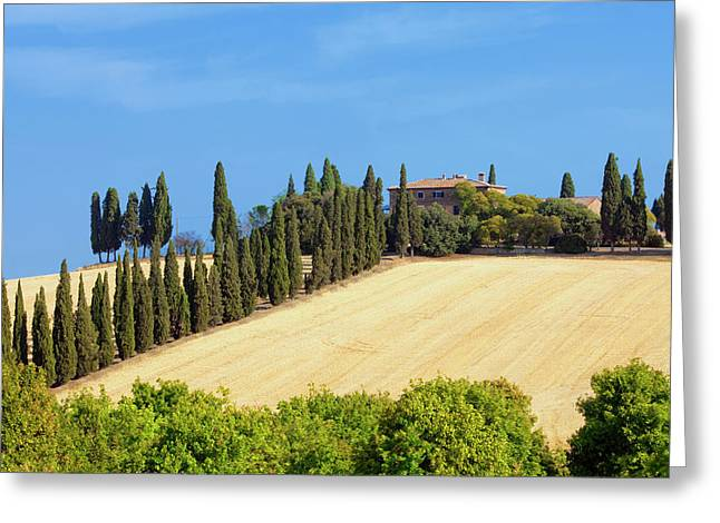 Italy, Tuscany - Farmhouse With Cypress Greeting Card by Panoramic Images