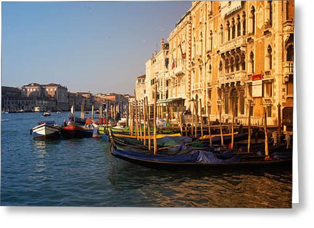 Santa Maria Della Salute Greeting Cards - Italy, Venice, Santa Maria Della Greeting Card by Panoramic Images