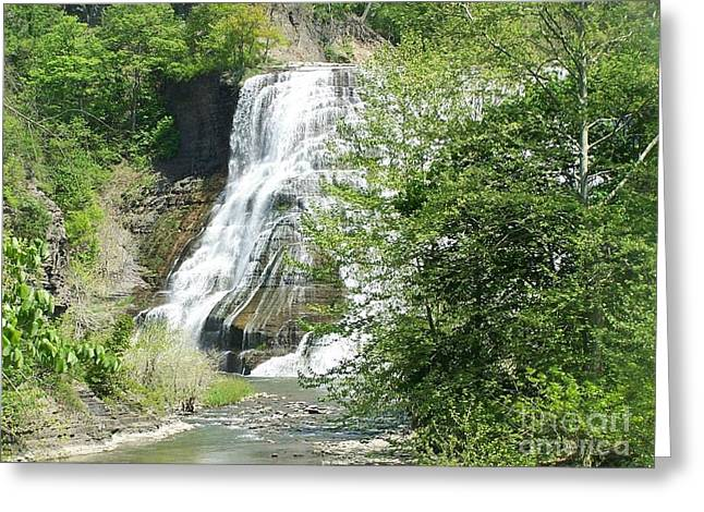 Ithaca Greeting Cards - Ithaca Falls Greeting Card by Charlotte Gray