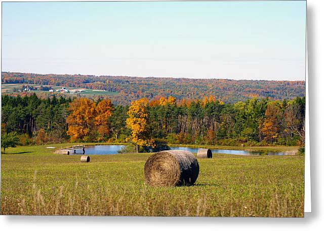 Ithaca Greeting Cards - Ithaca NY Greeting Card by Twin Tier Photos