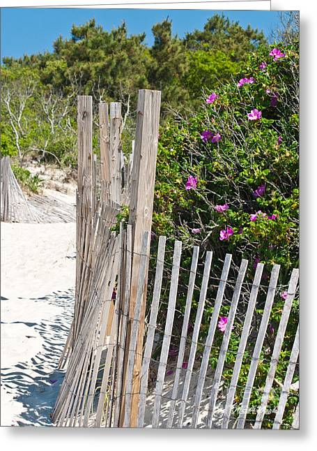 Beach Roses Greeting Cards - Its a Beach Day Greeting Card by Michelle Wiarda