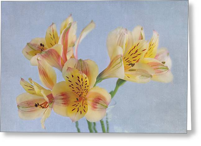 Alstroemeria Greeting Cards - Its A Beautiful Day Greeting Card by Kim Hojnacki