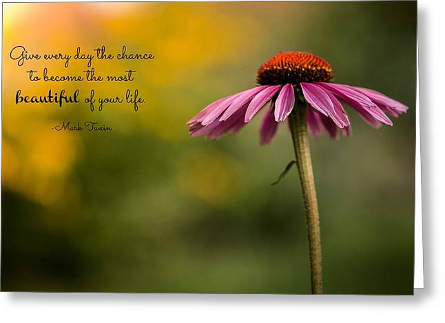Mark Twain Quote Greeting Cards - Beautiful Day Greeting Card by Sara Frank