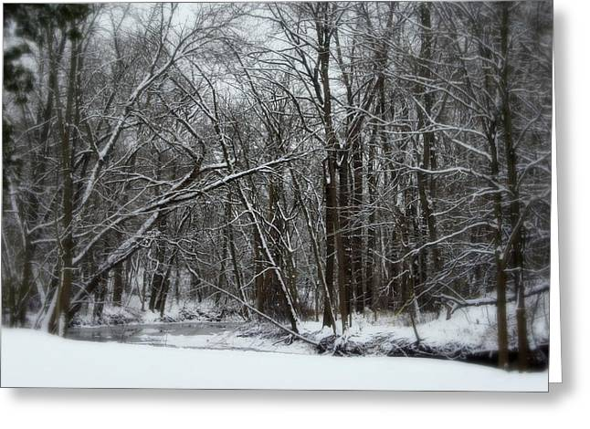 Winter Solstice Greeting Cards Greeting Cards - Its A Beautiful Winter Greeting Card by Kay Novy