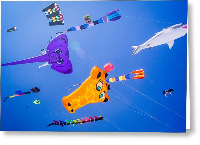 Kites Festival Greeting Cards - Its a Bird Its a Plane Its Greeting Card by Bill Pevlor