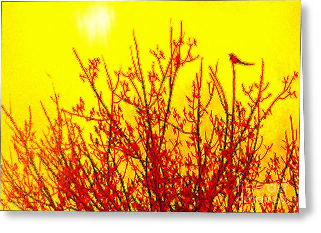 It's A Brand New Day Greeting Card by Cristophers Dream Artistry