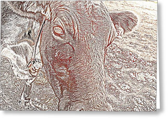 Its a cows life  Greeting Card by Hilde Widerberg