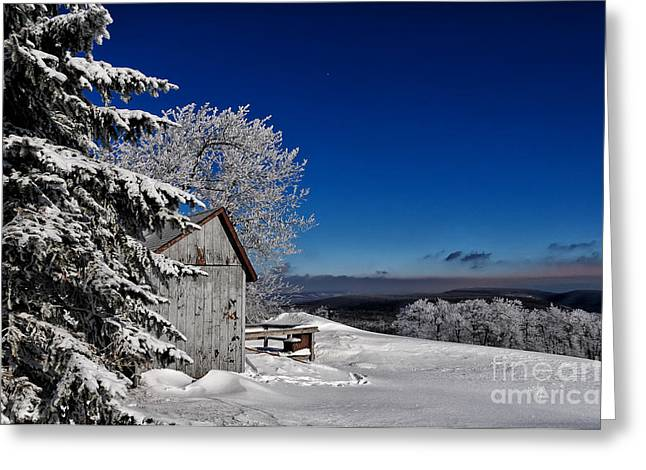 Snow-covered Landscape Photographs Greeting Cards - Its Got A Million Dollar View Greeting Card by Lois Bryan