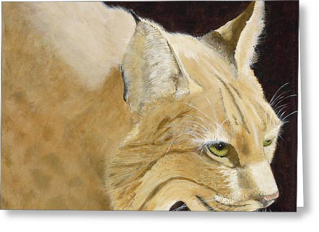 Bobcats Greeting Cards - Its Hot and Im Hungery Greeting Card by Joyce Blank