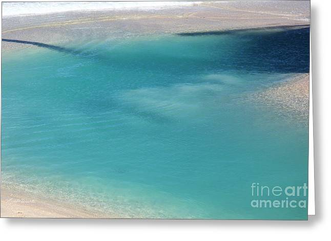 Ripples In The Water Greeting Cards - Its In The Water Greeting Card by Michelle Wiarda