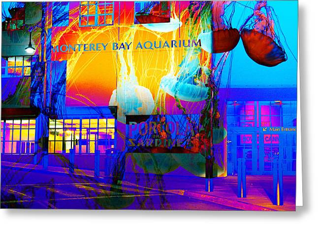 Monterey Canning Company Greeting Cards - Its Raining Jelly Fish At The Monterey Bay Aquarium 5D25177 Square Greeting Card by Wingsdomain Art and Photography