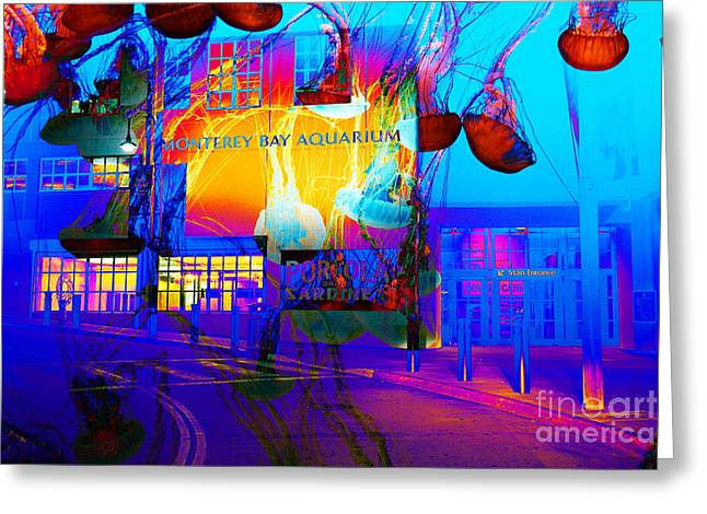 Monterey Canning Company Greeting Cards - Its Raining Jelly Fish At The Monterey Bay Aquarium 5D25177 Greeting Card by Wingsdomain Art and Photography