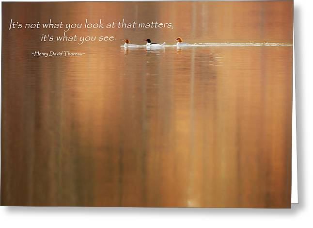 Henry David Thoreau Greeting Cards - Its What You See Greeting Card by Bill  Wakeley