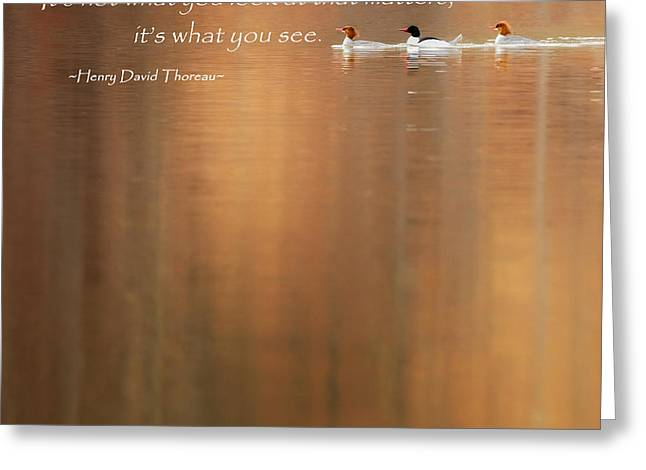 Henry David Thoreau Greeting Cards - Its What You See Square Greeting Card by Bill  Wakeley