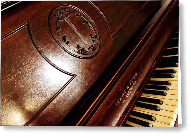 Metal Sheet Mixed Media Greeting Cards - Ivers Ponds Piano 3 Greeting Card by Todd and candice Dailey