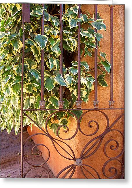 Antique Ironwork Greeting Cards - Ivy And Old Iron Gate Greeting Card by Ben and Raisa Gertsberg