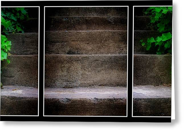 Stepping Stones Greeting Cards - Ivy Steps Triptych  Greeting Card by Steve Hurt