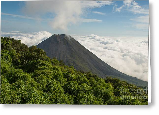 Geobob Greeting Cards - Izalco Volcano from Cerro Verde National Park El Salvador Central America Greeting Card by Robert Ford