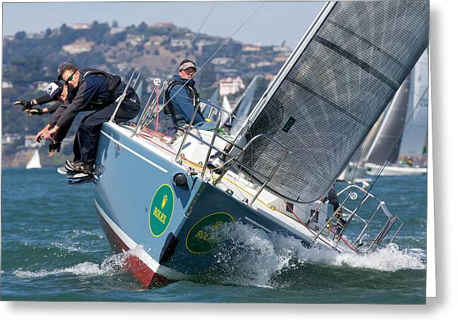 Marin County Greeting Cards - J105 Mojo Greeting Card by Steven Lapkin