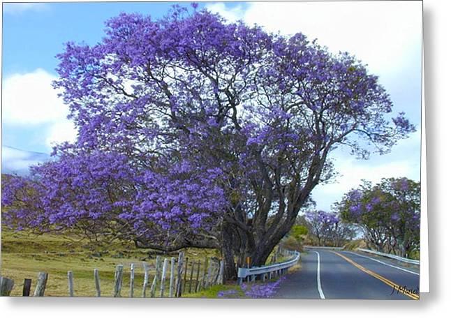 Ranch Pyrography Greeting Cards - Jacaranda Tree Greeting Card by J Marielle