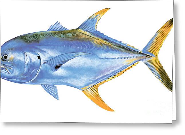 Bonefish Greeting Cards - Jack Crevalle Greeting Card by Carey Chen