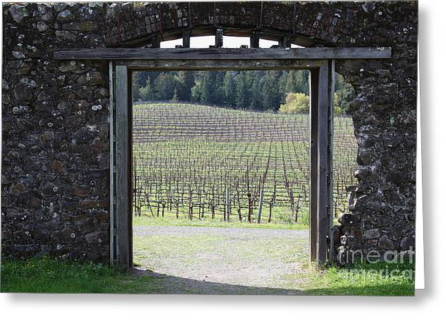 Pastoral Vineyards Greeting Cards - Jack London Ranch Winery Ruins 5D22132 Greeting Card by Wingsdomain Art and Photography