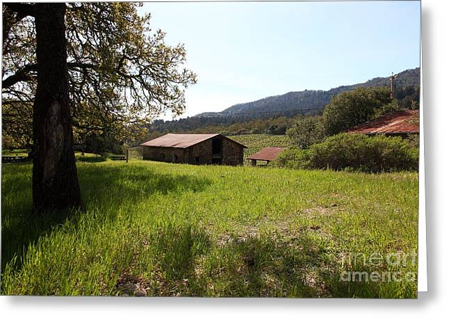 Jack London Stallion Barn 5d22056 Greeting Card by Wingsdomain Art and Photography