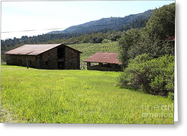 Pastoral Vineyards Greeting Cards - Jack London Stallion Barn 5D22058 Greeting Card by Wingsdomain Art and Photography