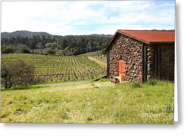 Sonoma Valley Greeting Cards - Jack London Stallion Barn 5D22106 Greeting Card by Wingsdomain Art and Photography