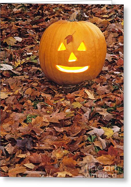 Holloween Greeting Cards - Jack O Lantern Greeting Card by Larry West