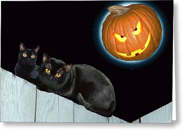 Jacko Greeting Cards - Jack O Lantern Moon Greeting Card by Bruce Iorio