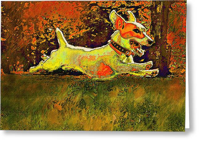 jack russell in autumn Greeting Card by Jane Schnetlage