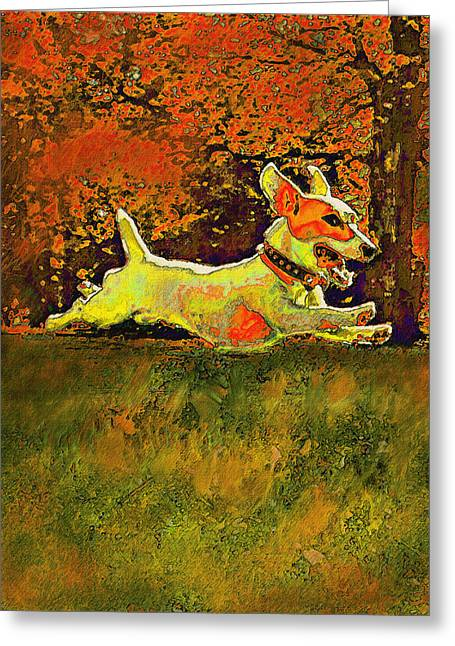 Puppies Digital Art Greeting Cards - Jack Russell In Autumn Greeting Card by Jane Schnetlage