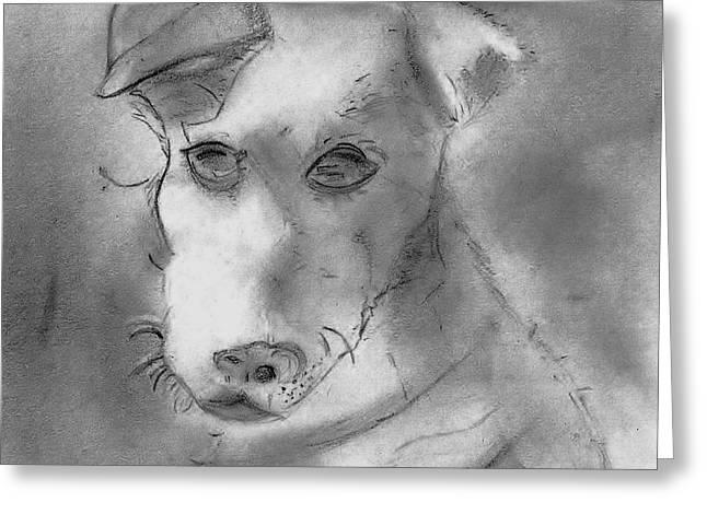 Veterinarian Greeting Cards - Jack Russell Terrier Greeting Card by Elizabeth Briggs