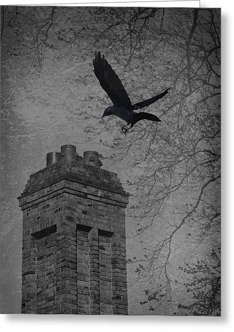 Winter Photos Greeting Cards - Jackdaw Flying To Chimney Greeting Card by Amanda And Christopher Elwell