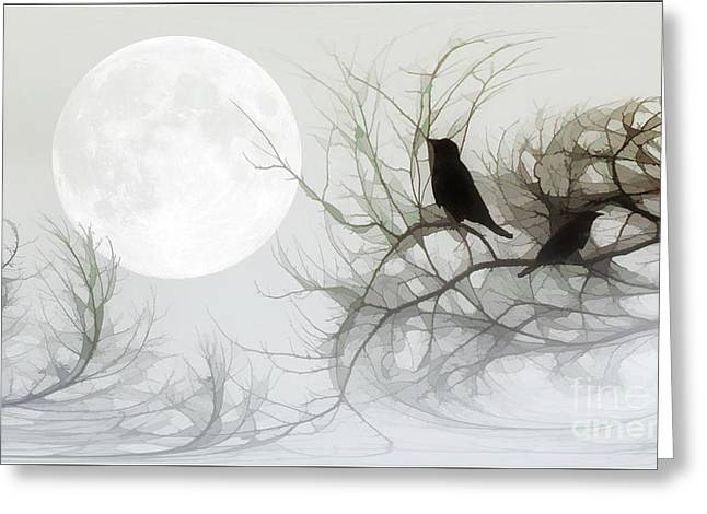 Jackdaws Greeting Cards - Jackdaws In The Moonlight Greeting Card by Tom York Images