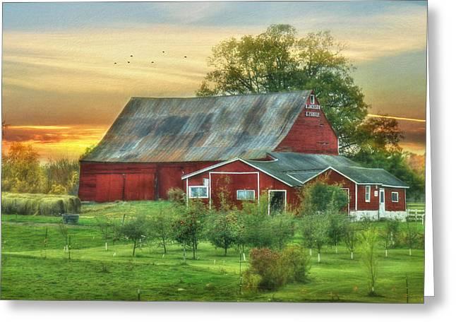 Orchard Digital Art Greeting Cards - Jackson Orchard Greeting Card by Lori Deiter