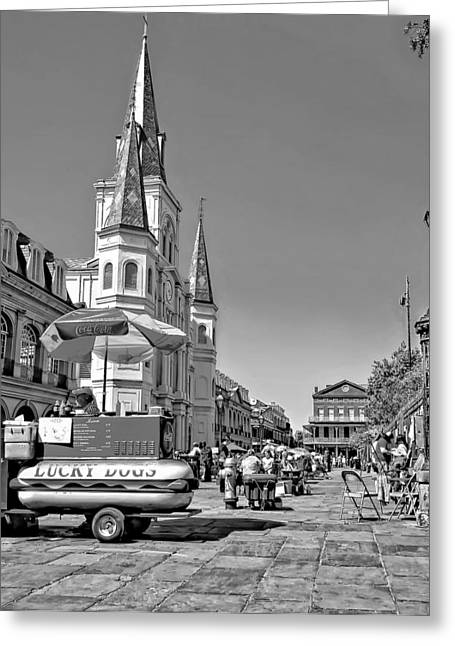 Lucky Dogs Greeting Cards - Jackson Square monochrome Greeting Card by Steve Harrington