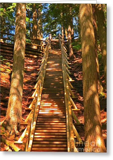 Wooden Stairs Greeting Cards - Jacobs Ladder Greeting Card by John Malone